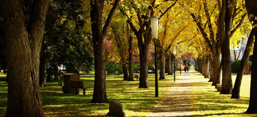 Prepare your home for sale this fall